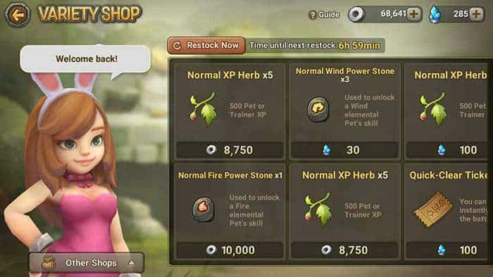 stone age begins variety shop