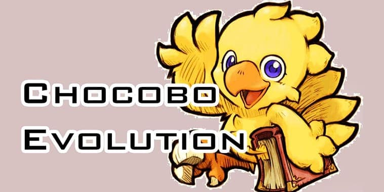 chocobo evolution