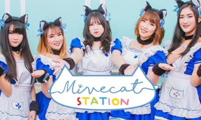 mivecat-station-maid-cafe-cover