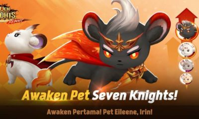 seven knights awaken pet eilenee irin