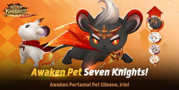 seven knights awaken pet eilenee irin
